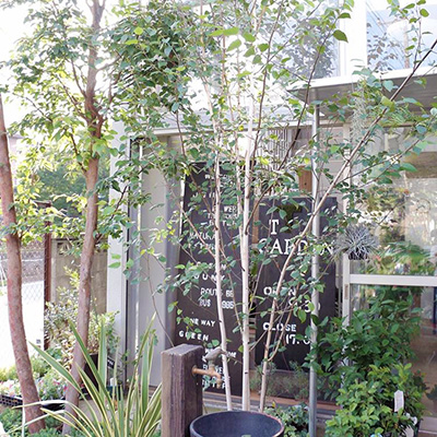立川造園 Garden shop T-Garden